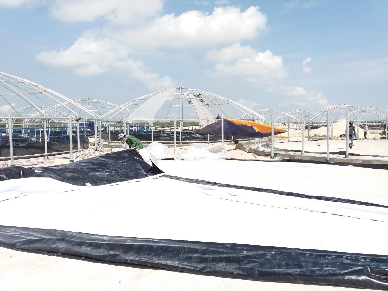 Bạt lót hồ nuôi trồng thủy hải sản